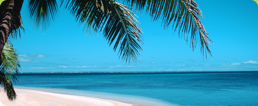 Visit Fort Myers Beach Coupons Vacation Information